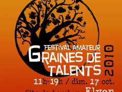 photo de Festival GRAINES DE TALENTS